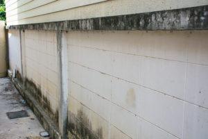 víme jak odstranit plíseň ze zateplených fasád Praha 2