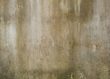 odstraňování plísní a řas ze zateplených fasád Praha 2