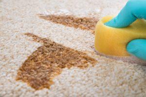 Kdo spolehlivě vyčistí koberec v Brně?