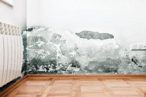 Jak odstranit žluté skvrny a plísně na stropě