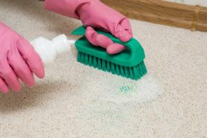 kvalitné čistenie kobercov