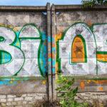 jak se bránit před vandaly