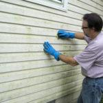 odborníci na odstraňování plísní