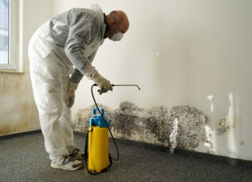 Jak čistit plíseň