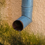 zásady odstranění plísně