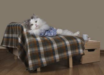 tepování sedaček